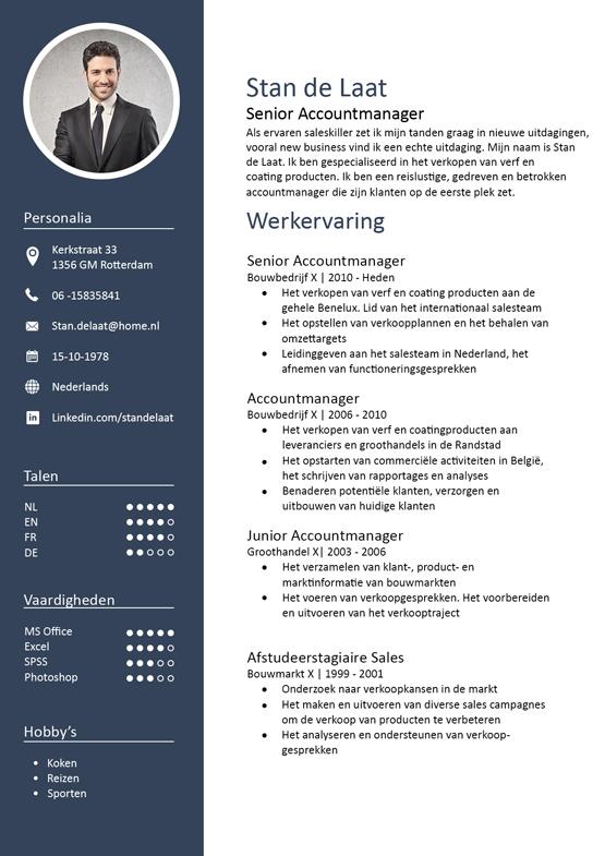accountmanager-cv-voorbeeld-pagina-1
