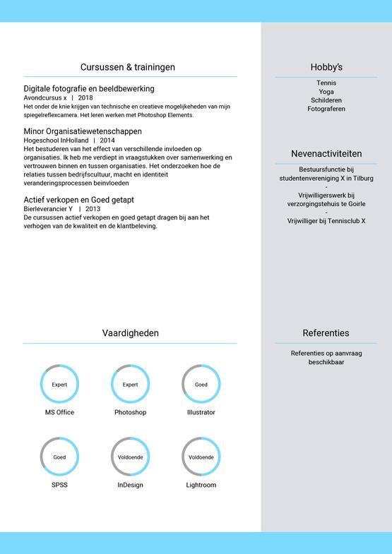voorbeeld-cv-starter-pagina-2