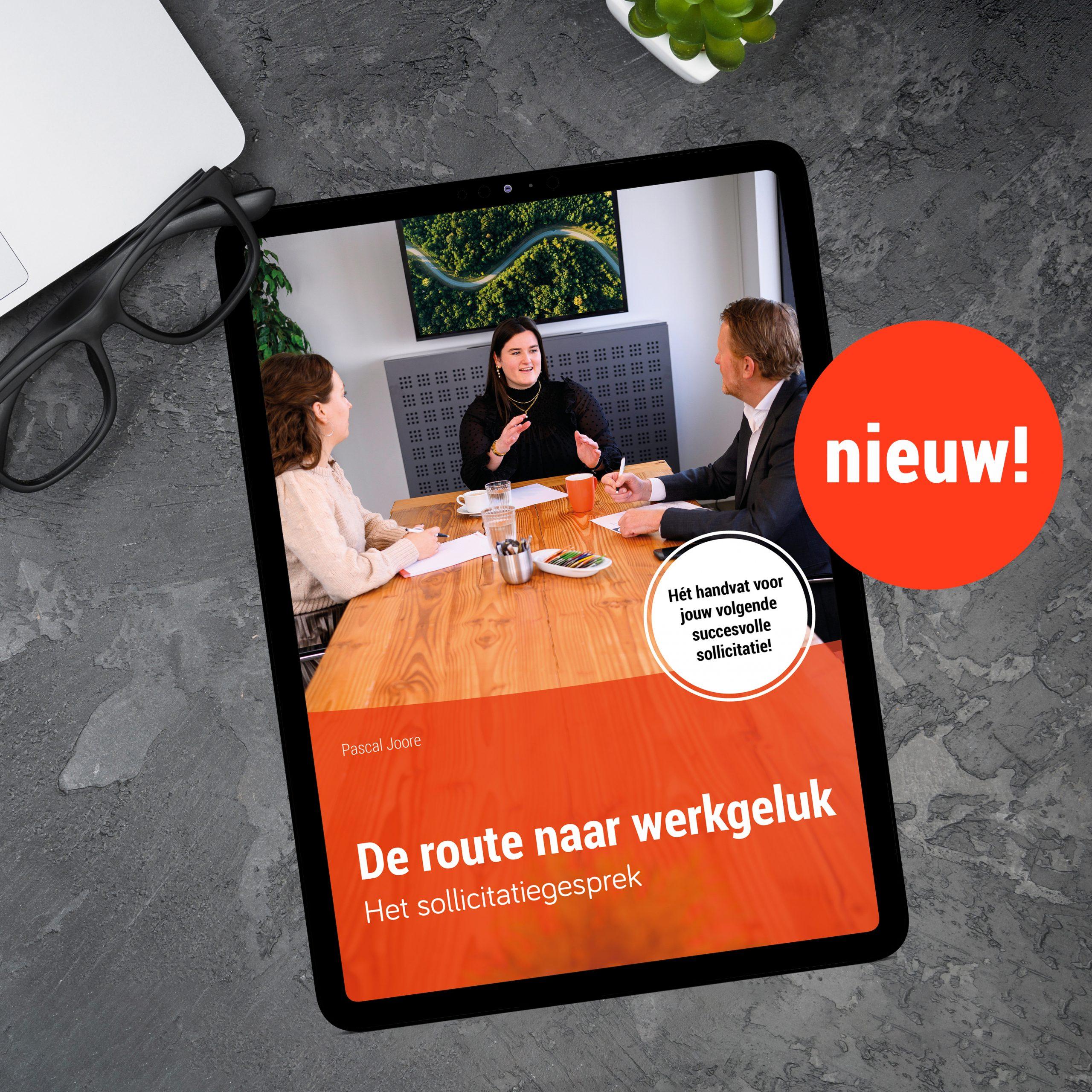 Nieuw-ebook-Het-sollicitatiegesprek