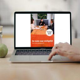 E-book-het-sollicitatiegesprek
